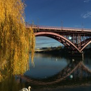 Amazing Drava River.