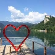 my love for slovenia