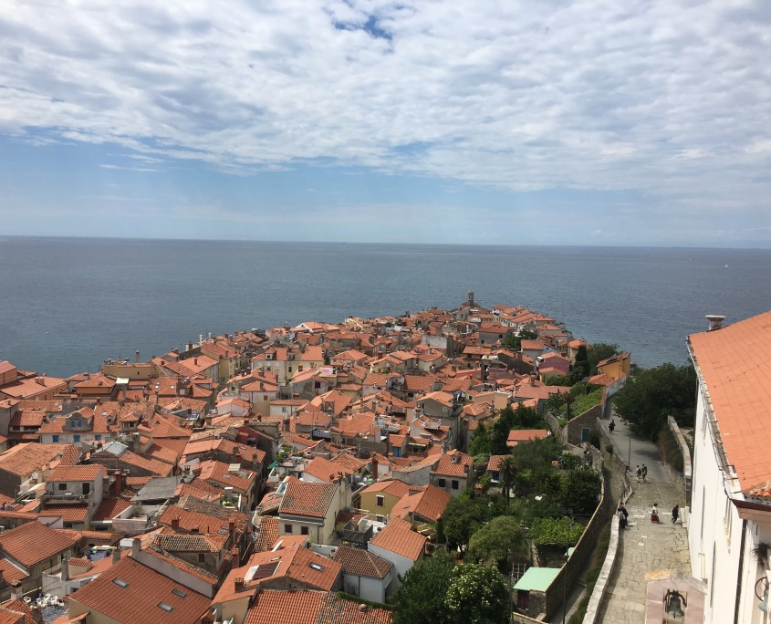 Piran peninsula from bell tower