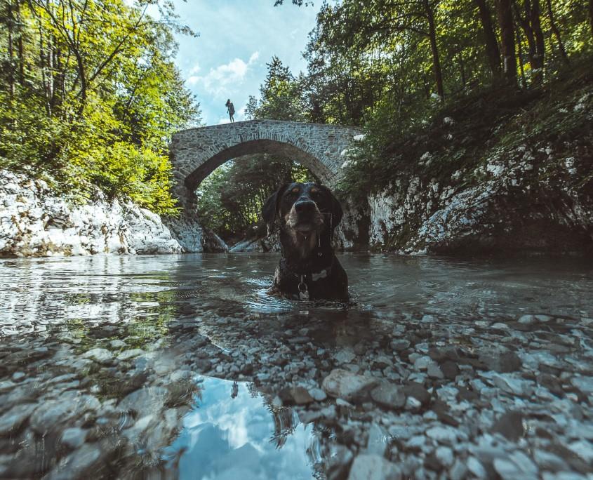IngmarWein_Exploring_InstaMeet_Slovenia-47