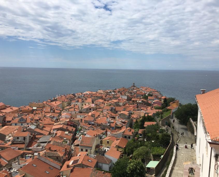 Piran peninsula from bell tower