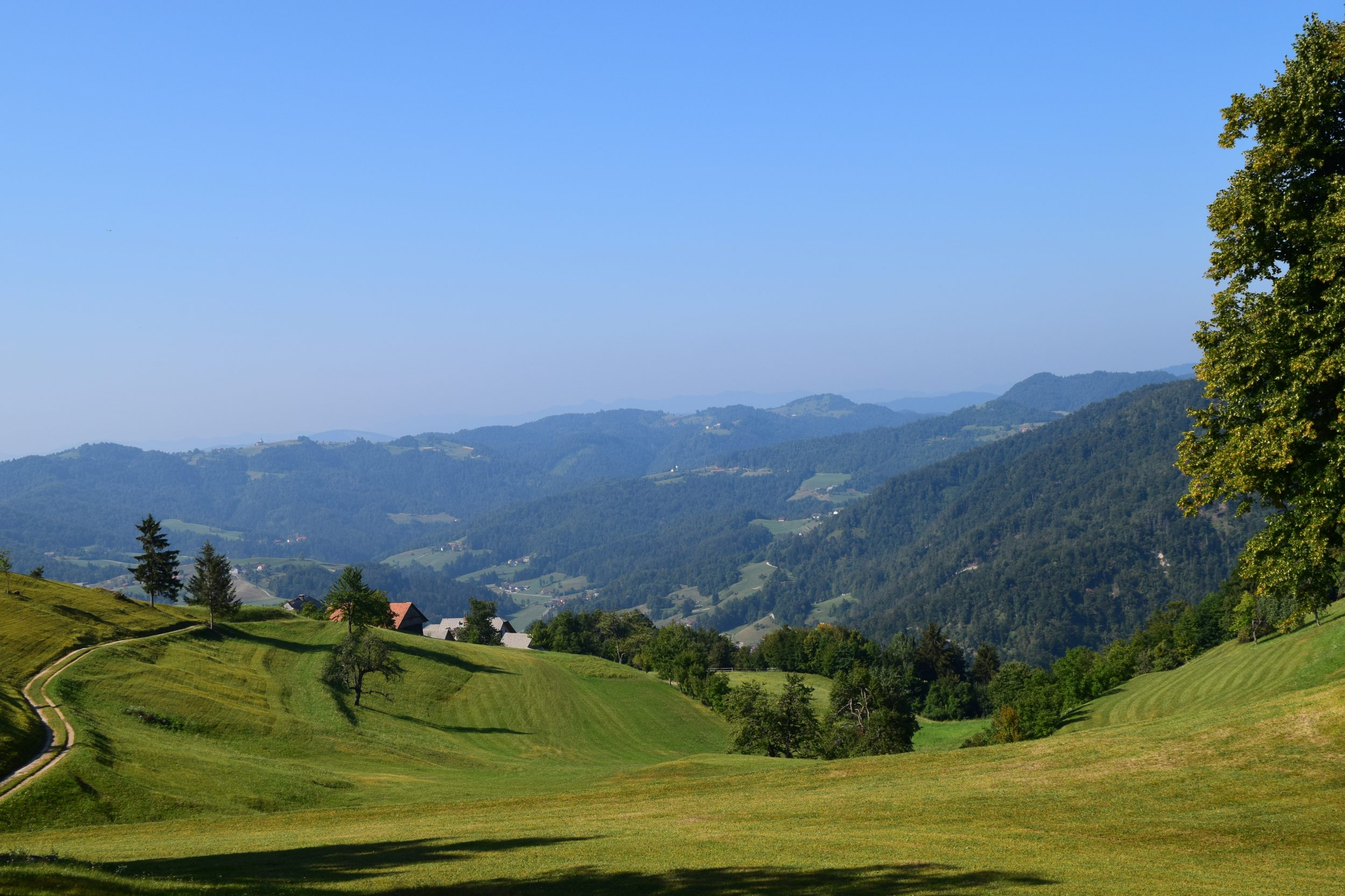 Observed On One Of Green Hills Of Blue >> Ljubljana Archives Igslovenia